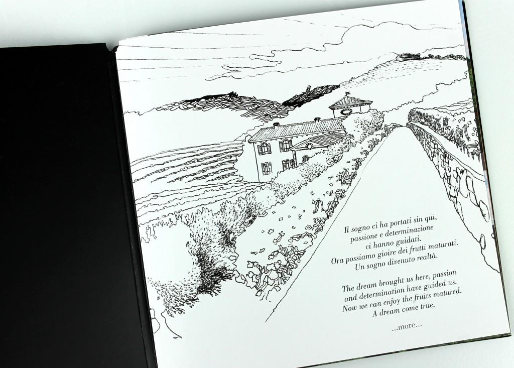 illustrazioni per brochure e web azienda agricola Ca' dei Ronchi
