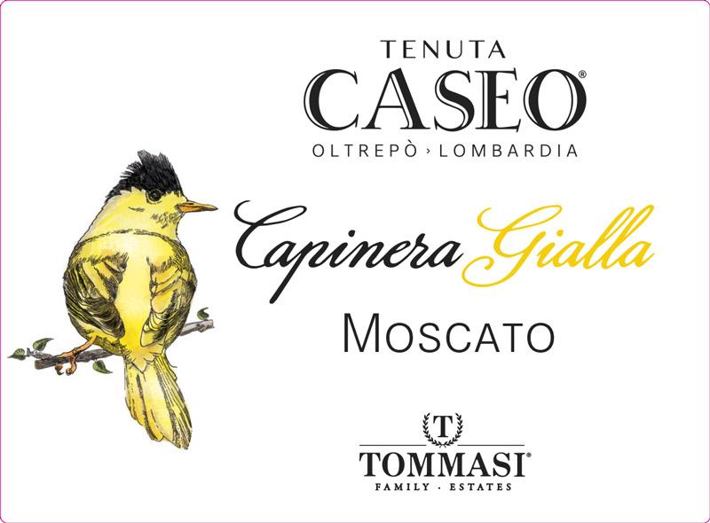 etichetta vino Moscato Capinera Gialla Oltrepò Pavese Tenuta CASEO Lombardia